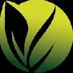 Green Company - Grama Sintética